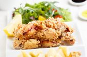Delicious fried baby squid - spanish traditional food(Tapas)