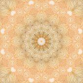 Pattern Of Mushroom Bottom Texture