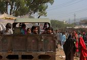 Children On A Truck In Pushkar