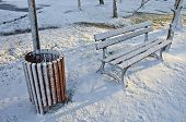 Rubbish Box And Wooden Bench In Winter Park