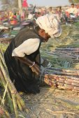 Indian Man Working On Bamboo Canes