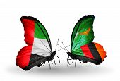Two Butterflies With Flags On Wings As Symbol Of Relations Uae And Zambia