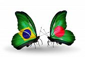 Two Butterflies With Flags On Wings As Symbol Of Relations Brazil And Bangladesh