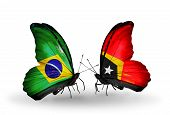 Two Butterflies With Flags On Wings As Symbol Of Relations Brazil And East Timor