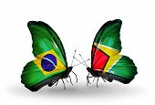 Two Butterflies With Flags On Wings As Symbol Of Relations Brazil And Guyana