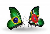 Two Butterflies With Flags On Wings As Symbol Of Relations Brazil And Dominica