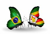 Two Butterflies With Flags On Wings As Symbol Of Relations Brazil And Zimbabwe