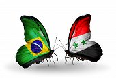 Two Butterflies With Flags On Wings As Symbol Of Relations Brazil And Syria