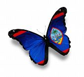 Flag Of Guam Butterfly, Isolated On White