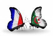 Two Butterflies With Flags On Wings As Symbol Of Relations France And Algeria