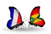 Two Butterflies With Flags On Wings As Symbol Of Relations France And Grenada