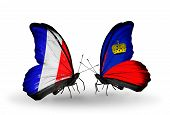 Two Butterflies With Flags On Wings As Symbol Of Relations France And Liechtenstein