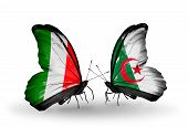 Two Butterflies With Flags On Wings As Symbol Of Relations Italy And Algeria