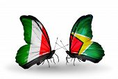 Two Butterflies With Flags On Wings As Symbol Of Relations Italy And Guyana