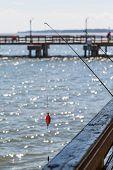 Fishing Pole Off Wood Pier