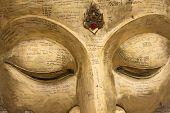 Head Budda Statue