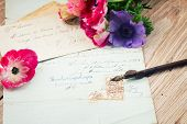 quill pen and antique letters with anemone flowers