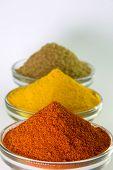 Chili Powder, Turmeric Powder & Coriander powder in Bowl isolated on White.