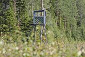 foto of october  - Hunting tower in a forest - JPG
