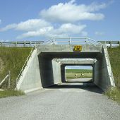 Rural Tunnel