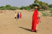 India - Camel Safari
