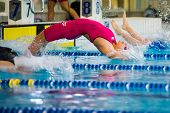 Milan - December  23:  S. Cartapani   (italy)  Performing In  Swimming Meeting Brema Cup On December