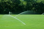 image of fescue  - Water sprinklers watering a green grass field - JPG