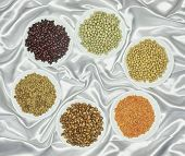 picture of legume  - View on various legumes on white fabric - JPG