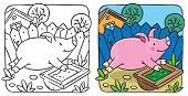 stock photo of porpoise  - Coloring book of little funny little pig or piglet running around the yard - JPG