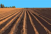 pic of plow  - vector illustration flat strip of plowed land stretching to the horizon - JPG