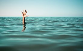 pic of sea life  - Hand in sea water asking for help - JPG
