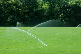 foto of fescue  - Water sprinklers watering a green grass field - JPG