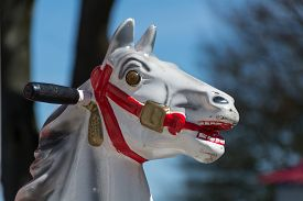 picture of carousel horse  - Head of an old carousel horse or a coin operated rocking horse automat - JPG