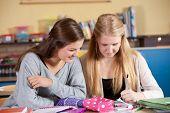 Two Schoolgirls In Class