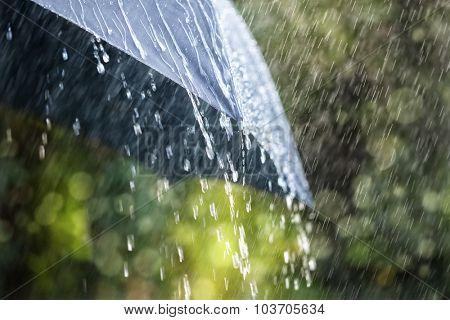 Rain drops falling from a