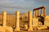 picture of euphrat  - ruins of temple at ancient palmyra in syria - JPG