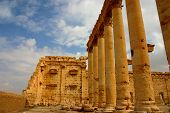 foto of euphrat  - historic temple at ancient palmyra at early morning - JPG