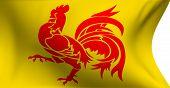 Flag Of Wallonia