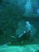 Seabed Explorer