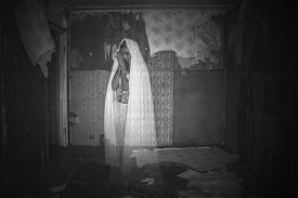 picture of wraith  - Photo of a Ghost in an abandoned room - JPG