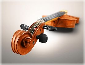 pic of string instrument  - Violin Musical Instrument Music Classical Music String Instrument White White Background - JPG