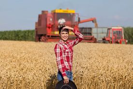 stock photo of cowgirl  - Cowgirl with plaid shirt and black hat walking in ripe wheat field during harvest - JPG