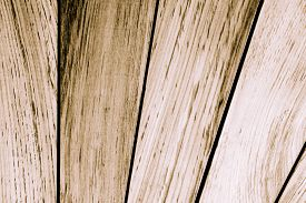 stock photo of lineup  - abstract of lineup wood board for background used - JPG
