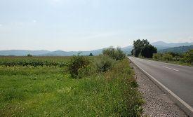 stock photo of biodiversity  - The Ljubljansko Barje also known as the Ljubljana Marshes - JPG
