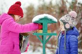 Two Adorable Sisters Feeding Birds On Chilly Winter Day In City Park. Children Helping Birds At Wint poster