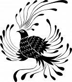 Bird  (vector)
