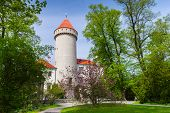 Постер, плакат: Konopiste Czech Republic Castle In Summer Day