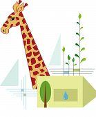 Jirafa, proteger su hábitat Natural