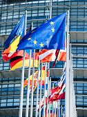 Clean Flags Of All Member States Of The European Union Waving In Calm Wind In Front Of The Parliamen poster