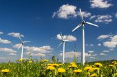 stock photo of wind-farm  - Wind Farm against blue sky with white clouds and yellow flowers on the ground - JPG
